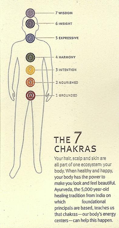 Chakras11